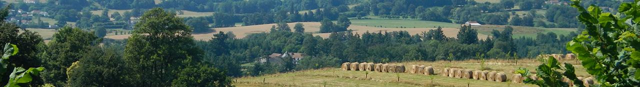 Bovins viande creuse - Chambre agriculture creuse ...